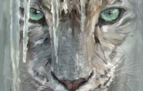 Snow Leopard_v2